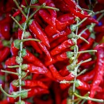 Veg stall - Chili